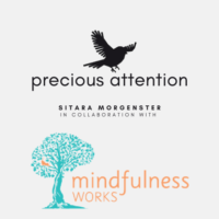 Mindfulness with Sitara Morgenster